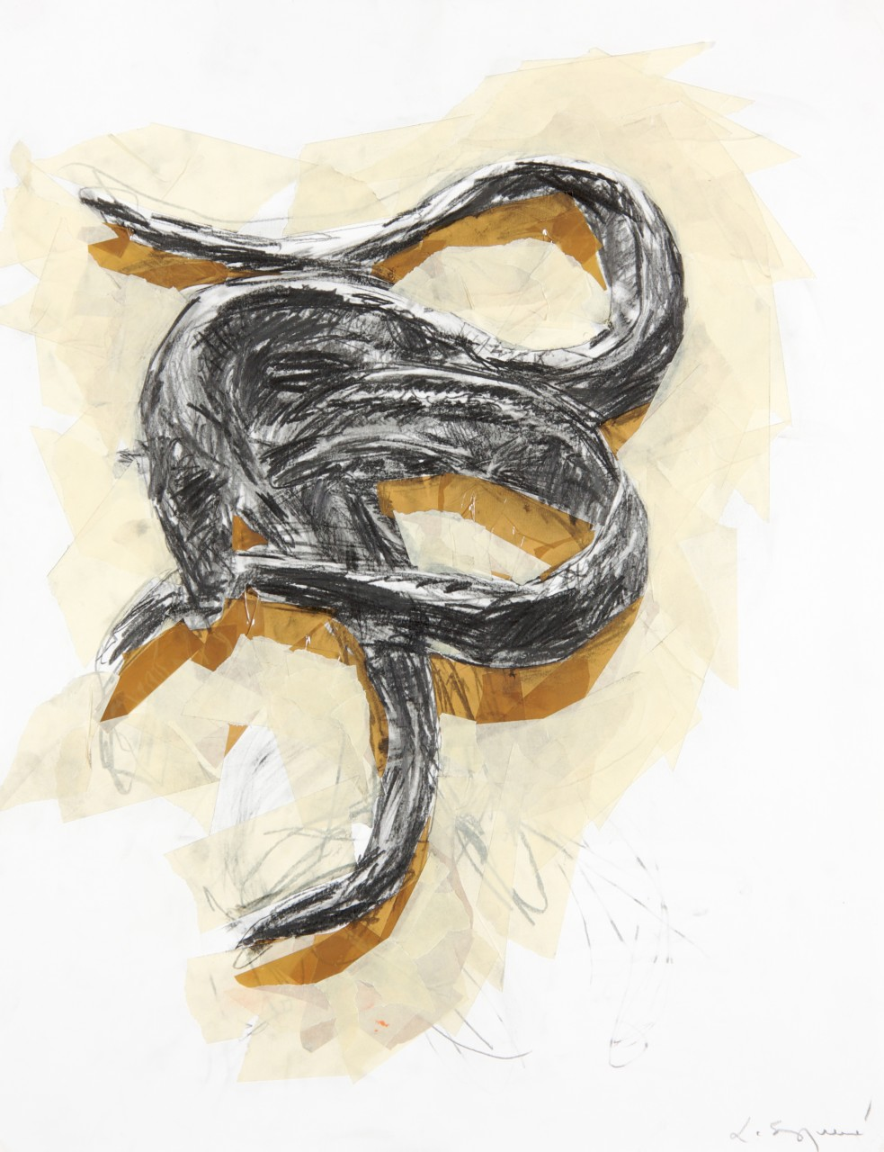 dessin-anguilles-laurent-esquerre