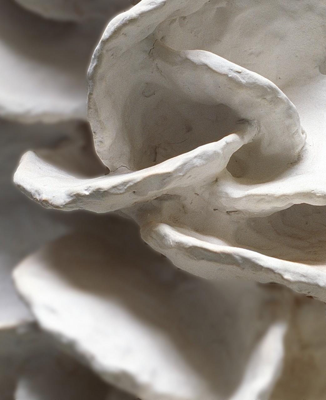 ceramique-lievre-laurent-esquerre-1
